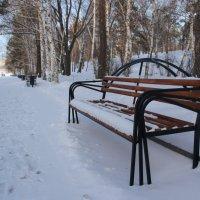 зима :: Елена Ожиганова