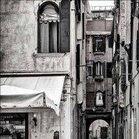 улицы флоренции :: Stan Tordua