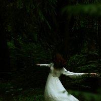 В танце леса :: Ольга Лукьяненок