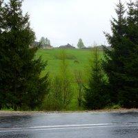 в дождь :: vg154