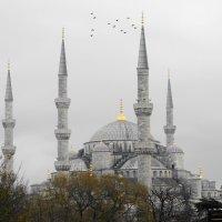 Стамбул :: Светлана