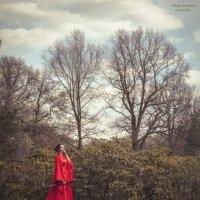Японский сад :: Саша Ходор
