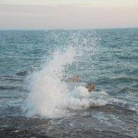 Волны :: Лэл Коваль