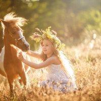 моя любимая лошадка :: Юлия Sky Никулина