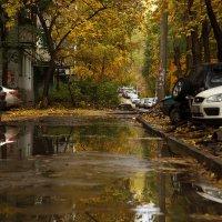 мой двор, осеннею порой :: Александр Сендеров