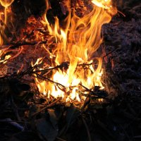 Вечернего костра огни... :: Nota Bene