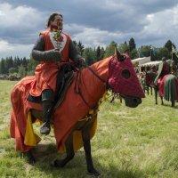 Рыцарь красного дракона и роза :: Алексей Ярошенко