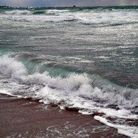 море волнуется :: Андрей Лисий