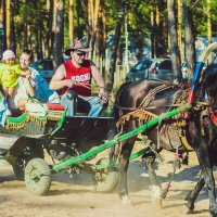 Катание на лошади :: Никита Живаев