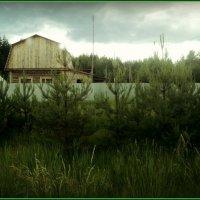 Ищем дом и добро в нём! :: Ольга Кривых