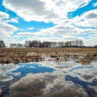 Весна :: Екатерина Мартынова