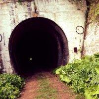 Японский туннель :: Екатерина Генералова