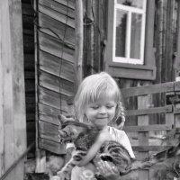 котятки... :: Вера Аверьянова