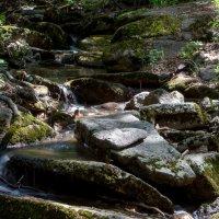 В горах Каркаралы :: Марат Рысбеков