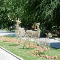 Семейка оленей :: Вероника Громова