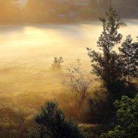 Утро Туманное...4 :: Андрей Войцехов