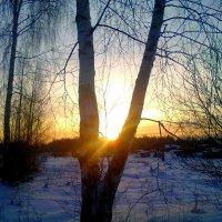 Февраль :: Катя Бокова