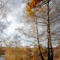 Осень над Окой. :: Александр Гризодуб