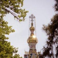 Алматы :: Катерина Шматова