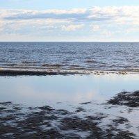 Северодвинск. Белое море. Отлив :: Владимир Шибинский