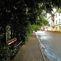 После дождя :: Yuriy V