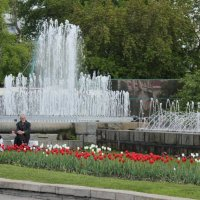 Старик у фонтана :: Наталья Золотых-Сибирская
