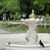 в жару у фонтана :: Юлия Мошкова