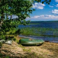 Отдых на природе :: Дмитрий Мясоутов