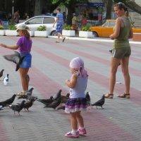 кормим голубей :: Валерий Дворников