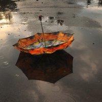 после дождя :: Ларико Ильющенко