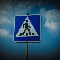 Ну пропустите пешехода) :: Света Кондрашова