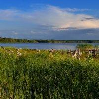 Озеро Большая Акуля. :: Сергей Адигамов