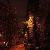 Во дворе :: Андрей Сорокин