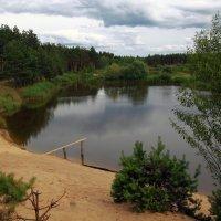 Лесное озеро :: Сергей *