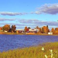 у озера :: vg154