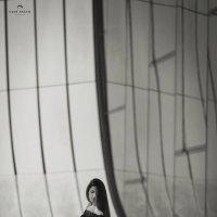 Черная роза. :: Ilgar Gracie