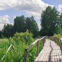 Мост :: Руслан Веселов