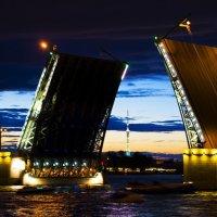 Дворцовый мост :: Янина Мишко