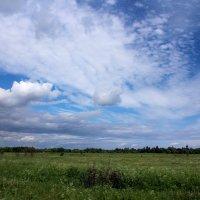 Облака над полем :: Вита Чернышева (CheVita)