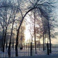 Зимой :: Милагрос Экспосито