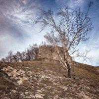на горе Стрельная,под Тольятти 3 :: сергей агаев