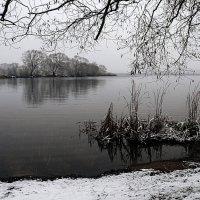 первый снег 1 :: Galina