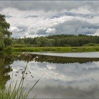 У озера :: Евгений Никифоров