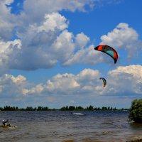 Наперегонки с ветром.... :: Svetlana Kravchenko