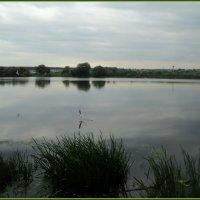 Река Москва в Подмосковном городе Лыткарино. :: Ольга Кривых