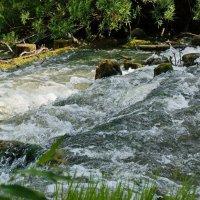 Вода кипит :: Валерий Симонов