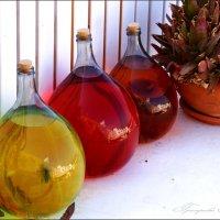 Созревание вина Санторини :: Наталия Григорьева