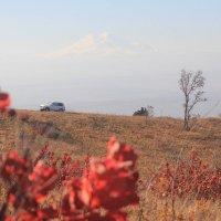 По склонам г. Бештау на фоне Эльбруса :: Vladimir 070549