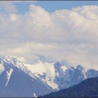 Вершины мистической горы Белухи :: Наталия Григорьева