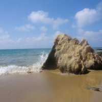 Камень у моря :: Евгений Николаев